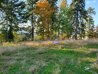 Photo 3: 3556 Parkview Cres in : PA Port Alberni Land for sale (Port Alberni)  : MLS®# 858515