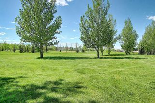 Photo 1: 211 Hampstead Circle NW in Calgary: Hamptons Detached for sale : MLS®# A1114233