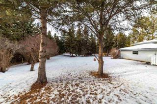 Photo 41: 12 Equestrian Place: Rural Sturgeon County House for sale : MLS®# E4229821