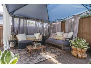 "Photo 30: 5 11962 236 Street in Maple Ridge: Cottonwood MR House for sale in ""DEWDNEY LANE"" : MLS®# R2590267"
