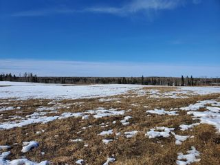 Photo 11: 0 NW9-33-5W5: Sundre Commercial Land for sale : MLS®# A1082207