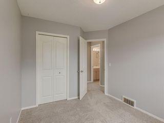 Photo 21: 300 CRAMOND Close SE in Calgary: Cranston Detached for sale : MLS®# A1013818