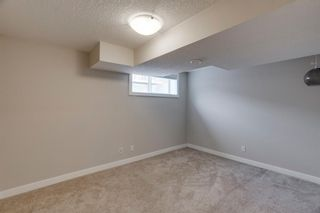 Photo 34: 65 Skyview Point Green NE in Calgary: Skyview Ranch Semi Detached for sale : MLS®# A1070707