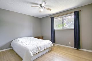 Photo 15: 10443 Wapiti Drive SE in Calgary: Willow Park Detached for sale : MLS®# A1128951