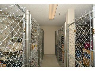 Photo 35: 208 128 CENTRE Avenue: Cochrane Condo for sale : MLS®# C4048864