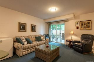 Photo 33: 542 Steenbuck Dr in : CR Campbell River Central House for sale (Campbell River)  : MLS®# 869480
