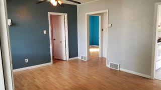 Photo 6: 8743 81 Avenue in Edmonton: Zone 17 House for sale : MLS®# E4241305