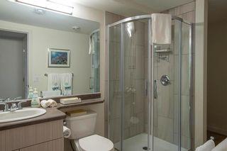 Photo 28: 10 Snowberry Circle in Winnipeg: Sage Creek Residential for sale (2K)  : MLS®# 202111774