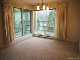 Photo 15: 303 720 Vancouver St in VICTORIA: Vi Fairfield West Condo for sale (Victoria)  : MLS®# 720572
