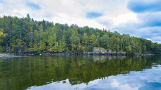 Photo 2: Lot 19 Five Point Island in South of Kenora: Vacant Land for sale : MLS®# TB212087