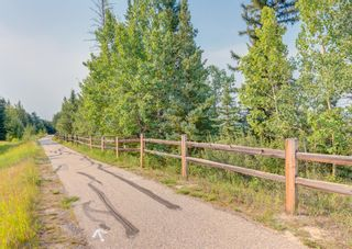 Photo 40: 120 Elbow Ridge Bluffs in Rural Rocky View County: Rural Rocky View MD Detached for sale : MLS®# A1133483