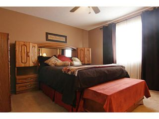 Photo 13: 254 CHAPARRAL VALLEY Drive SE in CALGARY: C-285 Residential Attached for sale (Calgary)  : MLS®# C3554170