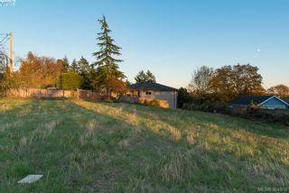 Photo 4: 3281 Cedar Hill Rd in VICTORIA: SE Cedar Hill Land for sale (Saanich East)  : MLS®# 773555