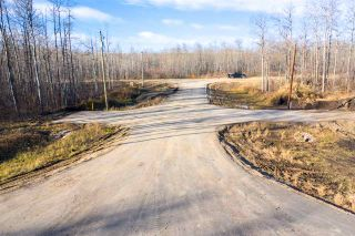 Photo 9: 40 50367 RR 222: Rural Leduc County Rural Land/Vacant Lot for sale : MLS®# E4220000