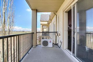 Photo 27: 327 52 CRANFIELD Link SE in Calgary: Cranston Apartment for sale : MLS®# A1104034