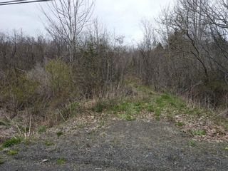 Photo 4: Lot 217 Highway in Rossway: 401-Digby County Vacant Land for sale (Annapolis Valley)  : MLS®# 202111048