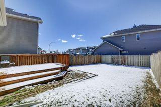 Photo 27: 181 Saddlecreek Point NE in Calgary: Saddle Ridge Detached for sale : MLS®# A1124301