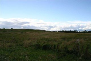 Photo 4: Lot 19 Con 2 in Amaranth: Rural Amaranth Property for sale : MLS®# X4235429