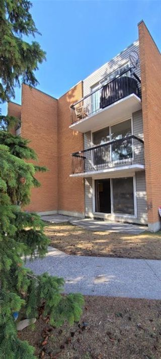 Photo 18: 201 3518 44 Street SW in Calgary: Glenbrook Apartment for sale : MLS®# A1119375