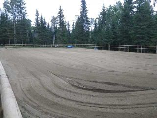Photo 6: 2 miles west of Dartique Hall in COCHRANE: Rural Rocky View MD Rural Land for sale : MLS®# C3545361