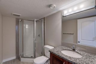 Photo 33: 65 Skyview Point Green NE in Calgary: Skyview Ranch Semi Detached for sale : MLS®# A1070707