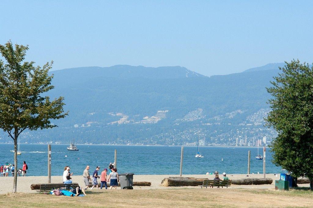 Photo 11: Photos: 201 1450 LABURNUM Street in Vancouver: Kitsilano Condo for sale (Vancouver West)  : MLS®# V1139155