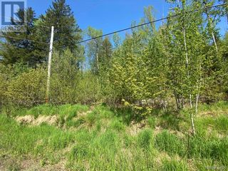 Photo 23: 5264 Rte 770 in Rollingdam: Vacant Land for sale : MLS®# NB058269