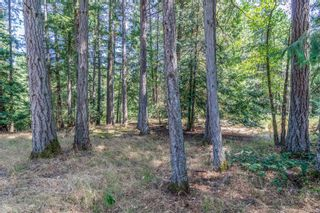 Photo 23: 390 Brookleigh Rd in : SW West Saanich Land for sale (Saanich West)  : MLS®# 883439