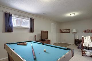 Photo 22: 163 Erin Meadow Green SE in Calgary: Erin Woods Detached for sale : MLS®# A1077161