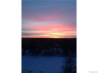 Photo 4: 246 Roslyn Road in Winnipeg: Osborne Village Condominium for sale (1B)  : MLS®# 1619975