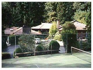 "Photo 4: 651 INGLEWOOD Avenue in West Vancouver: Cedardale Land for sale in ""CEDARDALE"" : MLS®# V1019564"