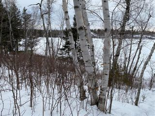 Photo 8: 21 Lot Block 5 Road in West Hawk Lake: R29 Residential for sale (R29 - Whiteshell)  : MLS®# 202103930
