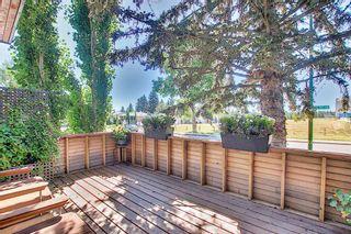 Photo 7: 3611 33 Street SW in Calgary: Rutland Park Semi Detached for sale : MLS®# A1143342