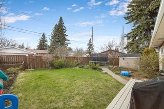 Photo 41: 6615 34 Street SW in Calgary: Lakeview Detached for sale : MLS®# A1106165