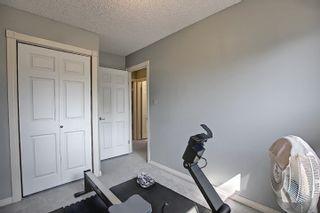 Photo 38: 9832 187 Street in Edmonton: Zone 20 House for sale : MLS®# E4253744