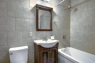 Photo 20: 348 TEMPLETON Circle NE in Calgary: Temple Detached for sale : MLS®# A1090566