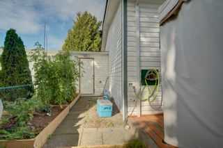 """Photo 18: 85 7790 KING GEORGE Boulevard in Surrey: East Newton Manufactured Home for sale in """"CRISPEN BAYS"""" : MLS®# R2617693"""