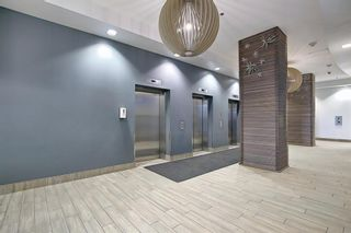 Photo 21: 1310 325 3 Street SE in Calgary: Downtown East Village Apartment for sale : MLS®# A1080940