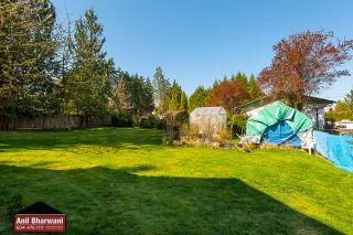 Photo 11: 12381 227 Street in Maple Ridge: North Maple Ridge House for sale : MLS®# R2569612