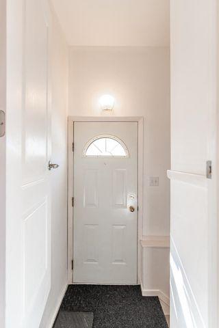 Photo 29: 9213 162 Street in Edmonton: Zone 22 House for sale : MLS®# E4264714
