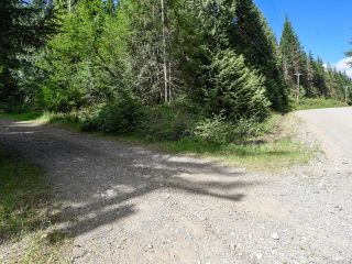 Photo 2: 5999 FORBIDDEN PLATEAU ROAD in COURTENAY: CV Courtenay West House for sale (Comox Valley)  : MLS®# 787510