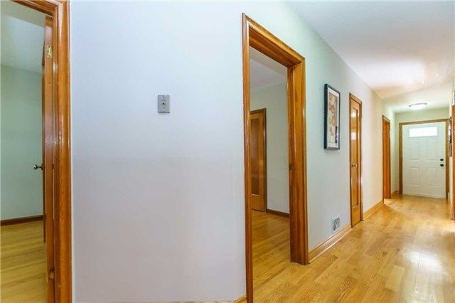 Photo 8: Photos: 304 Jackson Avenue in Oshawa: Central House (Bungalow) for sale : MLS®# E3997976