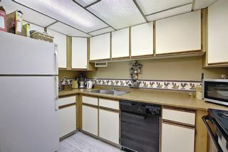 Photo 3: 119 333 Garry Crescent NE in Calgary: Greenview Apartment for sale : MLS®# A1139361