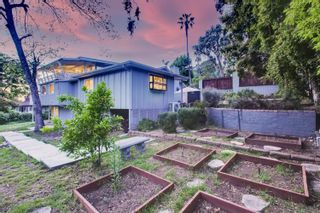 Photo 30: MOUNT HELIX House for sale : 5 bedrooms : 9255 Mollywoods Avenue in La Mesa