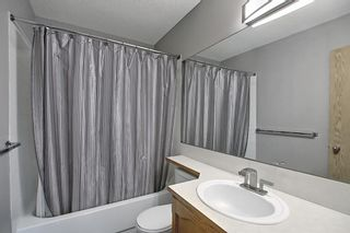 Photo 15: 3 Bedford Manor NE in Calgary: Beddington Heights Row/Townhouse for sale : MLS®# A1134709