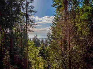 Photo 23: 8484 REDROOFFS ROAD in Halfmoon Bay: Halfmn Bay Secret Cv Redroofs House for sale (Sunshine Coast)  : MLS®# R2545137