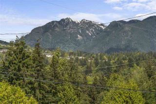 Photo 16: 860 JEFFERSON Avenue in West Vancouver: Sentinel Hill House for sale : MLS®# R2578522