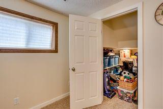 Photo 33: 93 ABERDARE Road NE in Calgary: Abbeydale Detached for sale : MLS®# C4240941