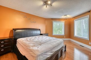 Photo 35: 143 Chapman Way SE in Calgary: Chaparral Detached for sale : MLS®# A1116023