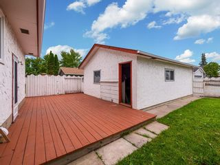 Photo 22: 603 MAIDSTONE Drive NE in Calgary: Marlborough Park Detached for sale : MLS®# C4259121